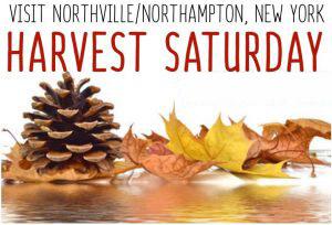 Harvest Saturday